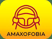boton amaxofobia